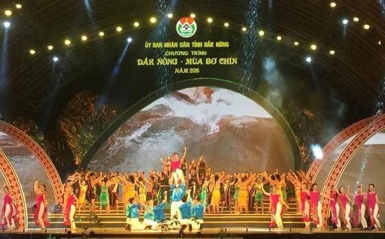Program promotes Dak Nong avocados  - ảnh 1