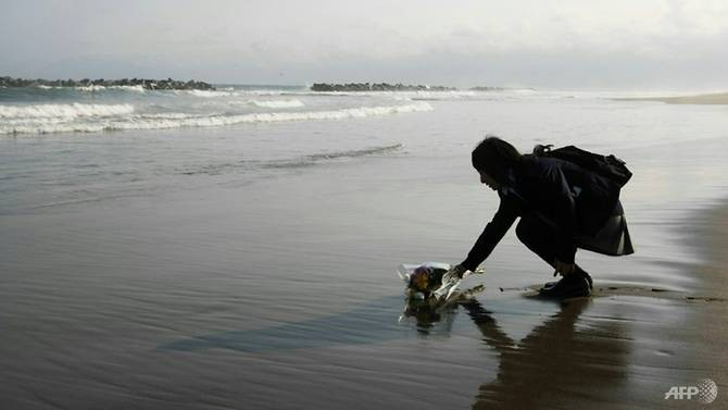 Japan's beaches hit by 2011 nuclear, tsunami disaster reopen - ảnh 1