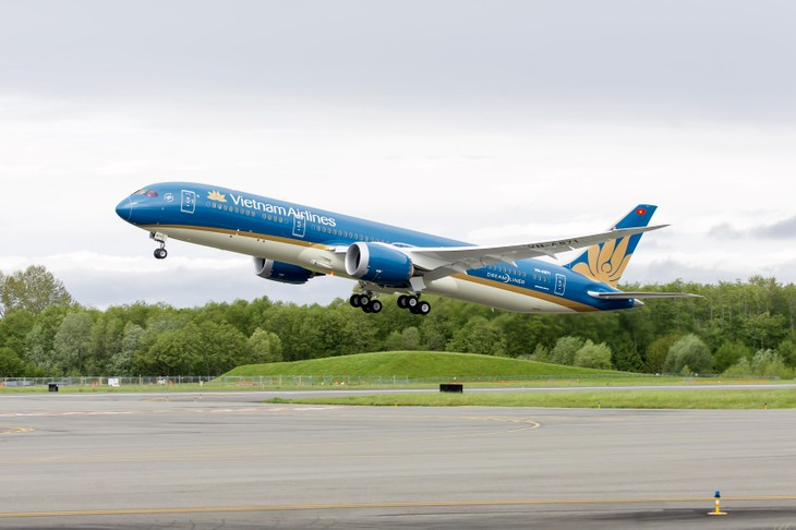 Vietnam Airlines adds flights to Indonesia for football fans - ảnh 1