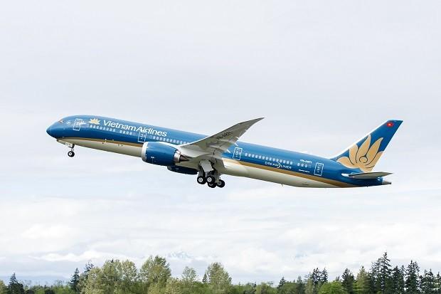 Vietnam Airlines to resume flights to Osaka  - ảnh 1