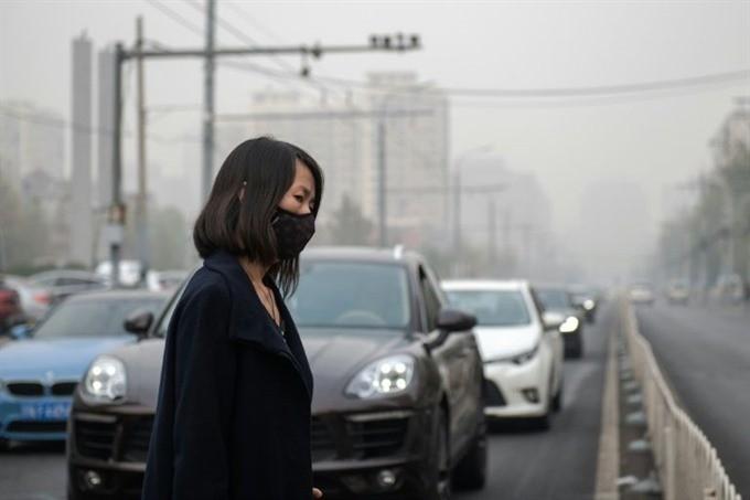 World Bank promises 200 billion USD to fight climate change - ảnh 1
