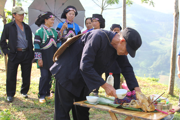 Agricultural rituals and wedding customs of the Bo Y ethnic people                            - ảnh 1
