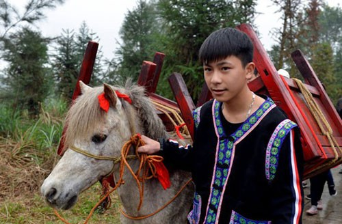 Agricultural rituals and wedding customs of the Bo Y ethnic people                            - ảnh 2