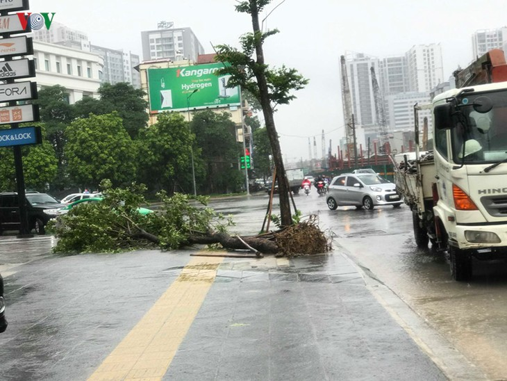 Storm Wipha lands in Quang Ninh, weakens to tropical depression - ảnh 1
