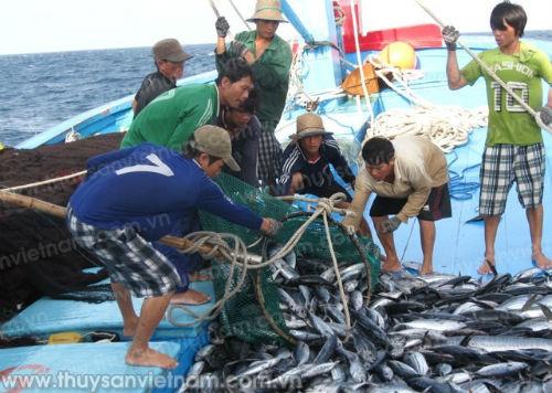 Hội Nghề cá Việt Nam phản đối lệnh cấm đánh bắt cá khu vực biển Đông - ảnh 1