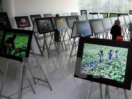 Phát động cuộc thi ảnh nghệ thuật quốc tế lần thứ 8 tại Việt Nam - ảnh 1