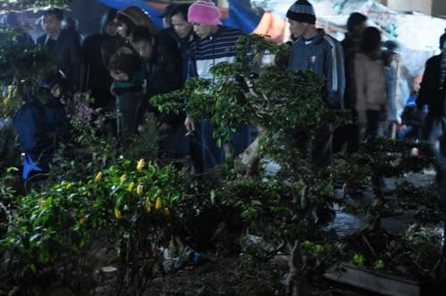 Chợ Viềng Nam định Họp Vào Ngày Nào: Đi Chợ Viềng Nam Định Mua May Cầu Lành