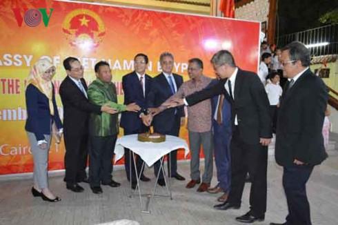Quan hệ Việt Nam - Ai Cập không ngừng phát triển toàn diện  - ảnh 1
