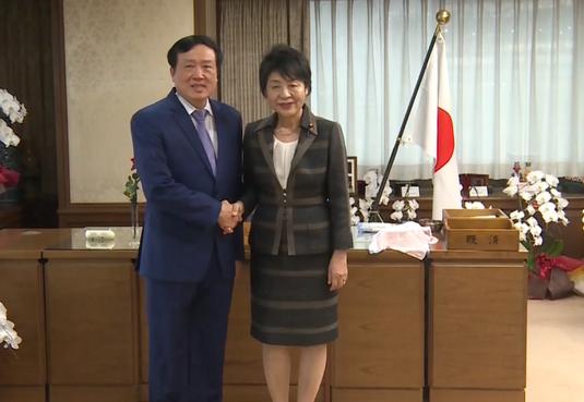 Việt Nam và Nhật Bản tăng cường hợp tác về ngành tòa án - ảnh 1