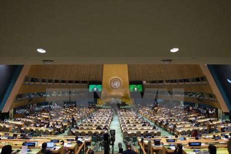 Việt Nam cam kết tiếp tục hợp tác quốc tế để giải quyết vấn đề người tị nạn  - ảnh 1