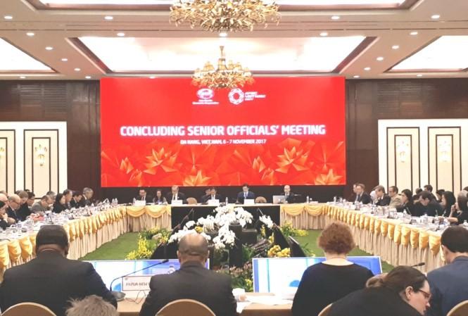 APEC Việt Nam 2017: Tạo động lực, gắn kết các nền kinh tế thành viên - ảnh 3