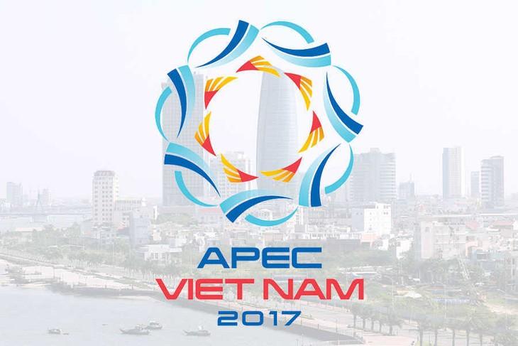 APEC 2017: Việt Nam phát huy vai trò chủ nhà cùng những đóng góp tích cực - ảnh 1