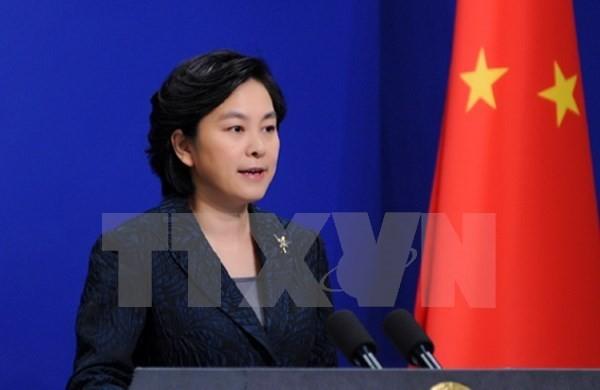 Trung Quốc chia sẻ với Việt Nam công tác khắc phục hậu quả bão Damrey - ảnh 1