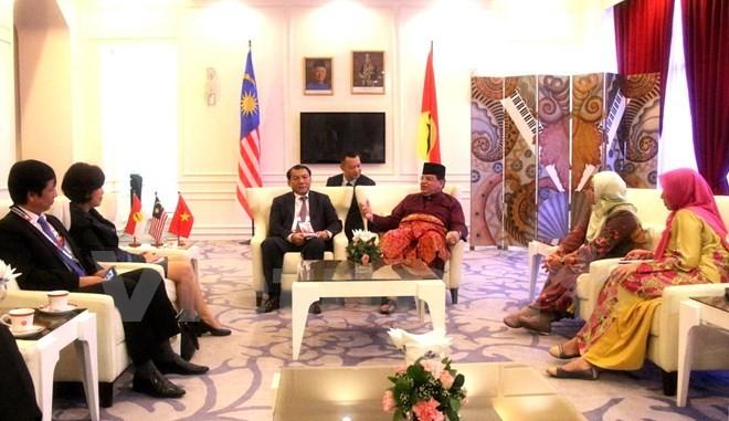 Đoàn đại biểu Đảng Cộng sản Việt Nam tham dự đại hội đảng cầm quyền tại Malaysia - ảnh 1