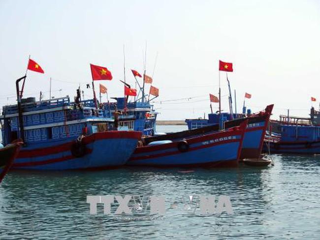 Trung Quốc cấm đánh cá trong vùng biển thuộc chủ quyền của Việt Nam là không có giá trị - ảnh 1