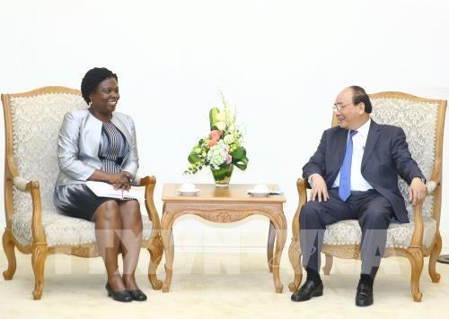Thủ tướng Nguyễn Xuân Phúc tiếp Phó Chủ tịch WB phụ trách khu vực Đông Á-Thái Bình Dương - ảnh 1
