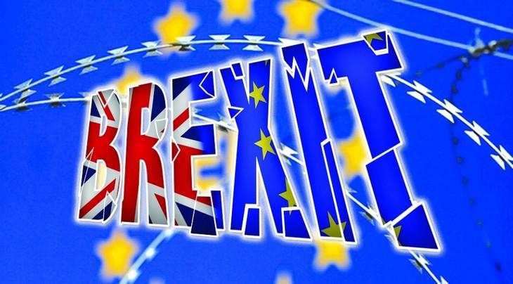 Brexit 2018: Cuộc chia tay nhiều trắc trở - ảnh 2