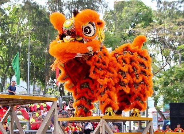 Rộn ràng Liên hoan lân – sư – rồng Thành phố Hồ Chí Minh lần thứ 2 - ảnh 1
