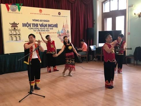 Hội thi văn nghệ - điểm nhấn về hoạt động văn hóa nghệ thuật của cộng đồng người Việt tại LB Nga năm 2019 - ảnh 1