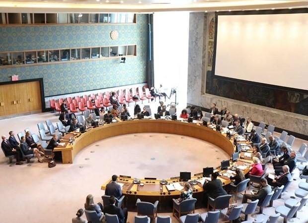 Việt Nam ứng cử vào Hội đồng bảo an: Trách nhiệm vì một thế giới hòa bình - ảnh 1