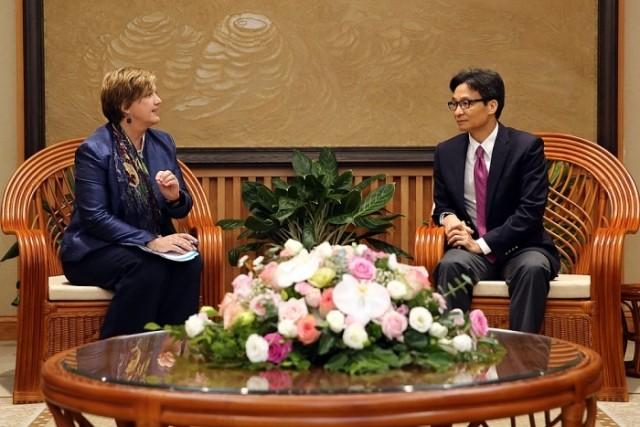 Phó Thủ tướng Vũ Đức Đam tiếp Trưởng đại diện UNICEF tại Việt Nam - ảnh 1
