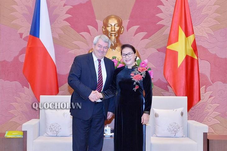 Chủ tịch Quốc hội Nguyễn Thị Kim Ngân tiếp Phó Chủ tịch Hạ viện Cộng hoà Czech - ảnh 1