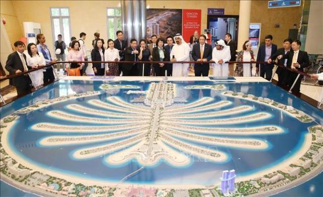 Phó Chủ tịch nước thăm Đại sứ quán Việt Nam tại UAE và làm việc với Tập đoàn Nakheel và Mimitless - ảnh 1