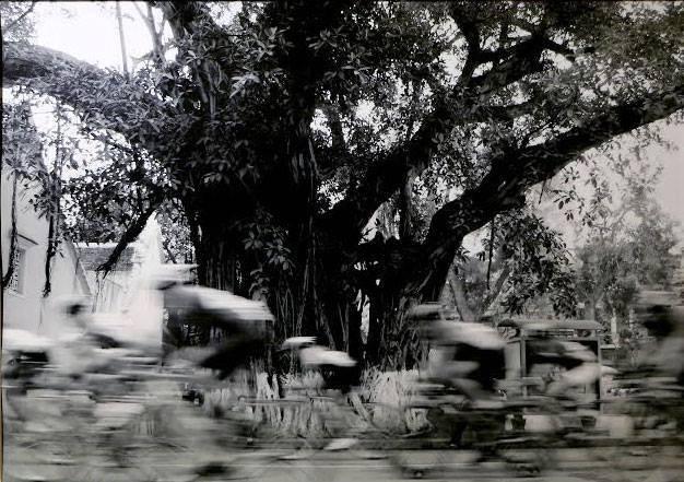 Nguyễn Hữu Bảo - người truyền cảm xúc bằng những khuôn hình - ảnh 6