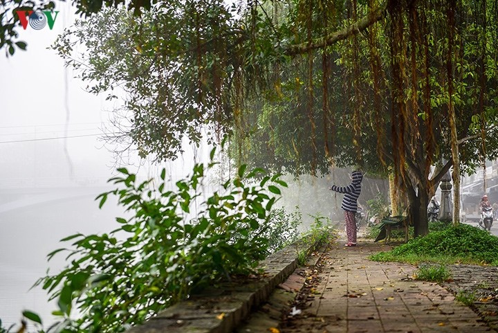 Breathtaking scenery of ancient Hue amid fog in late winter - ảnh 11