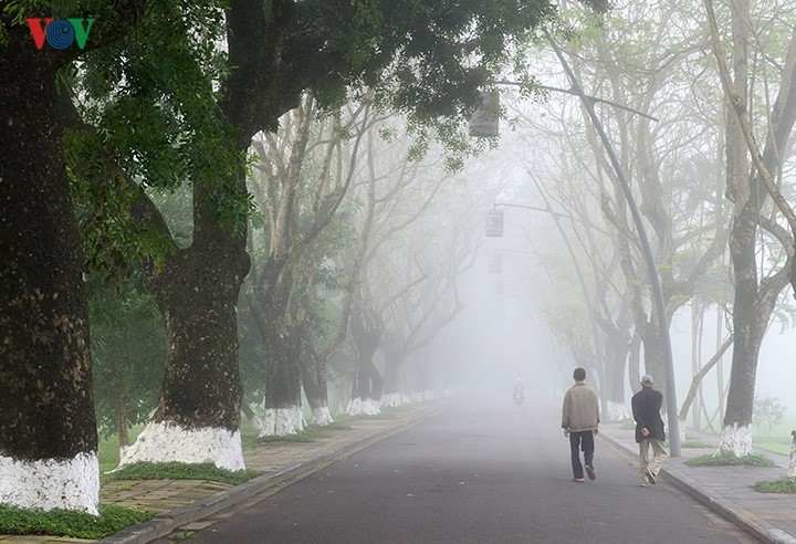 Breathtaking scenery of ancient Hue amid fog in late winter - ảnh 9