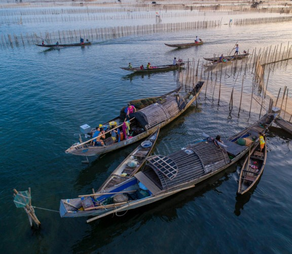 Discovering magnificent sunrise of Chuon lagoon in Thua Thien Hue - ảnh 7