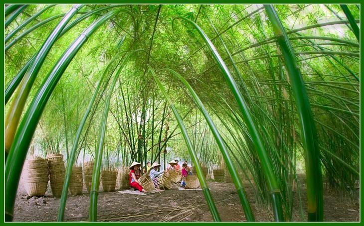 Việt Nam đẹp như tranh vẽ qua các tác phẩm ảnh tại triển lãm Ánh sáng từ tâm - ảnh 7