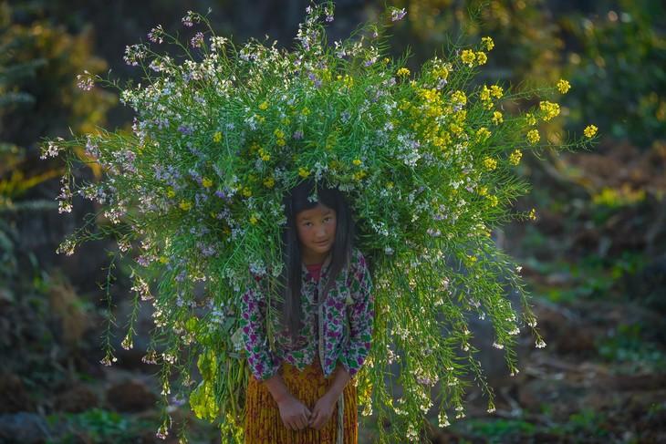 Việt Nam đẹp như tranh vẽ qua các tác phẩm ảnh tại triển lãm Ánh sáng từ tâm - ảnh 9