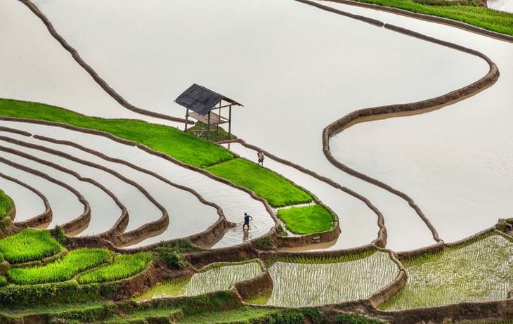 Việt Nam đẹp như tranh vẽ qua các tác phẩm ảnh tại triển lãm Ánh sáng từ tâm - ảnh 15