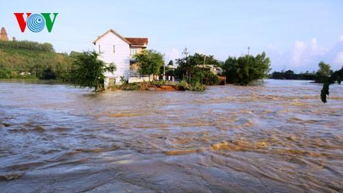 Localidades vietnamitas superan consecuencias de precipitaciones e inundaciones - ảnh 1