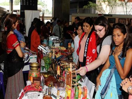 Feria popular ASEAN+India, Corea del Sur y Japón llama atención internacional - ảnh 1