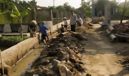 Dong Tho moviliza fuerza del pueblo para edificar área rural - ảnh 2