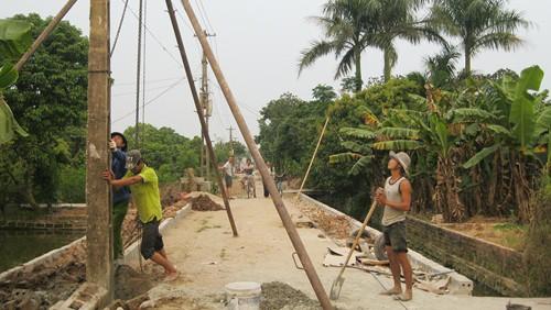 Dong Tho moviliza fuerza del pueblo para edificar área rural - ảnh 1