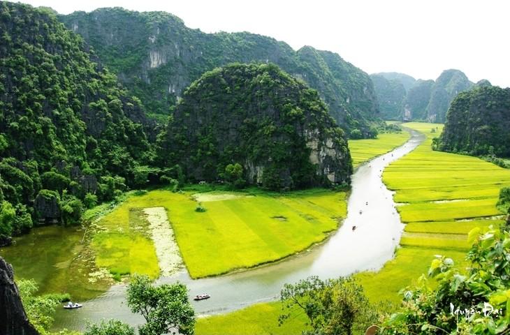 La belleza del conjunto paisajístico de Tràng An - ảnh 12
