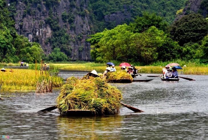 La belleza del conjunto paisajístico de Tràng An - ảnh 13