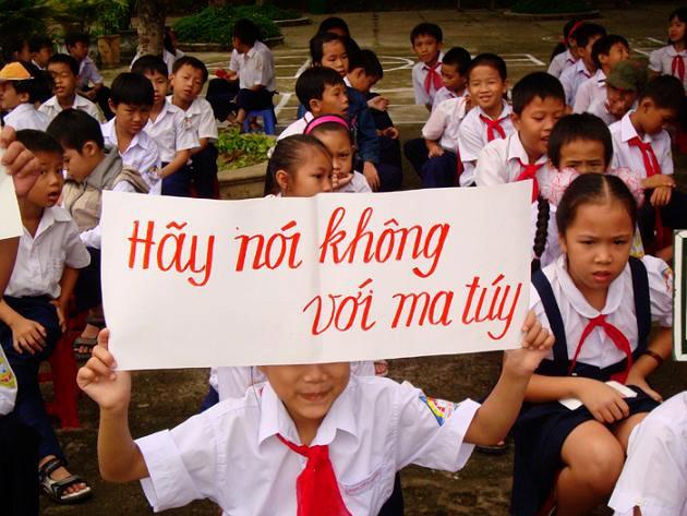 Vietnam refuerza la lucha contra el abuso de drogas y el narcotráfico - ảnh 1