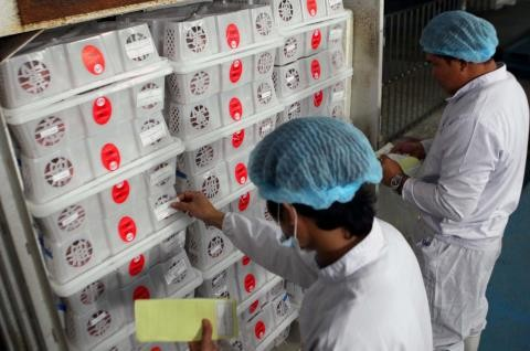 Oportunidades de exportaciones vietnamitas con el ejemplo del litchi  - ảnh 1