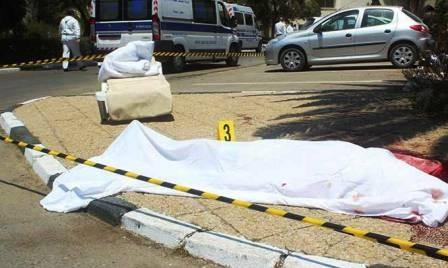 Condena comunidad internacional atentados en Francia, Túnez y Kuwai - ảnh 1