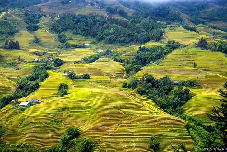Impresionante Naturaleza En Trayecto Sapa Y Ty