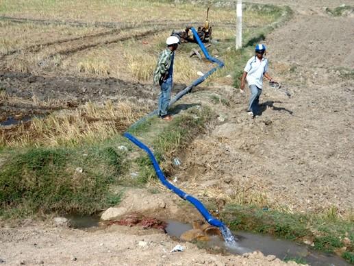 Comprometidas organizaciones internacionales en ayudar a Vietnam a superar la sequía y salinización - ảnh 1