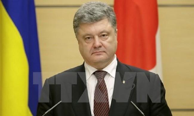 Presidente de Ucrania rechaza disolución del Parlamento - ảnh 1