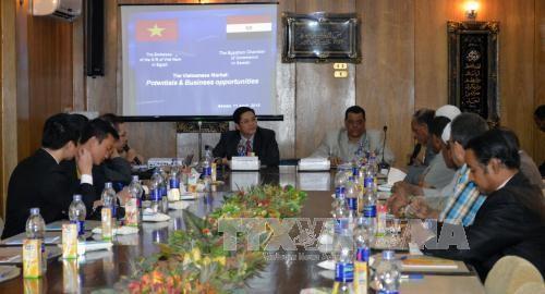 Empresas egipcias buscan expandir sus negocios en Vietnam - ảnh 1
