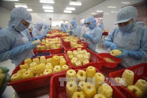 Reconocen crecimiento impresionante de Vietnam en comercio exterior - ảnh 1