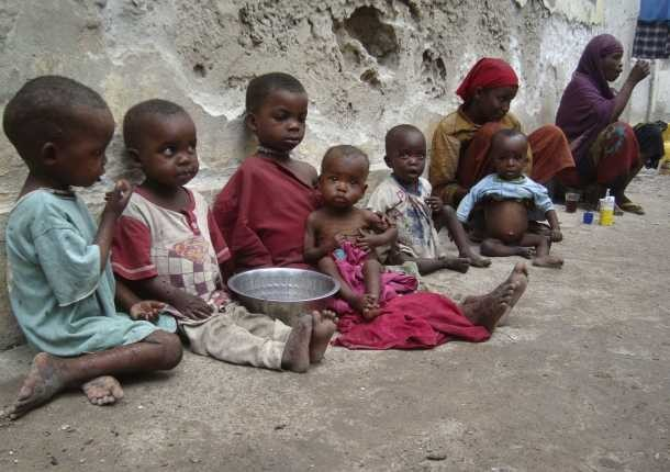 ONU llama ayudas humanitarias urgentes para Somalia - ảnh 1