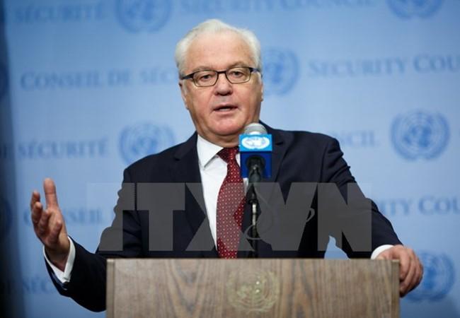 Rusia continuará apoyando al gobierno sirio contra el terrorismo - ảnh 1